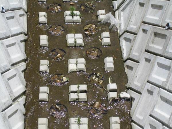 根固めブロックの施工方法